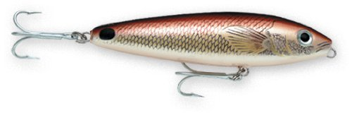 - Rapala Saltwater Skitter Walk 11 Fishing lure, 4.375-Inch, Redfish