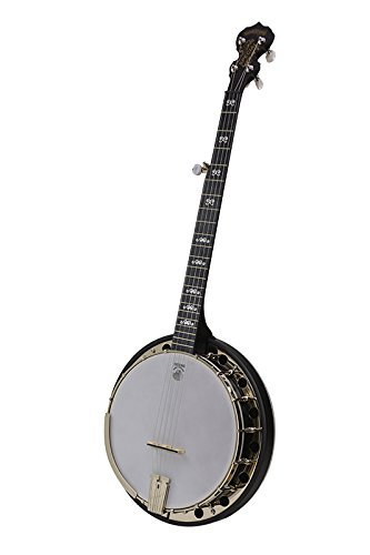 Deering Goodtime Midnight Special 5-String Banjo - New Model 2016 by Goodtime