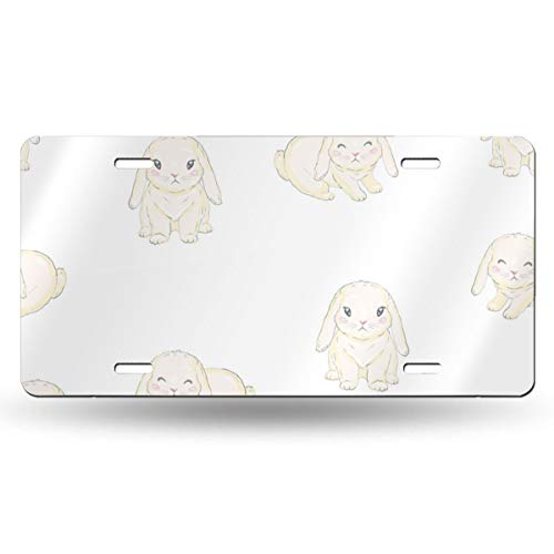 WGCXX Cute Cartoon Bunny Baby Customized Personalized Metal License Plate, License Plate Metal Signage Car Decoration 6 Inches X 12 Inches,Customizable Signature