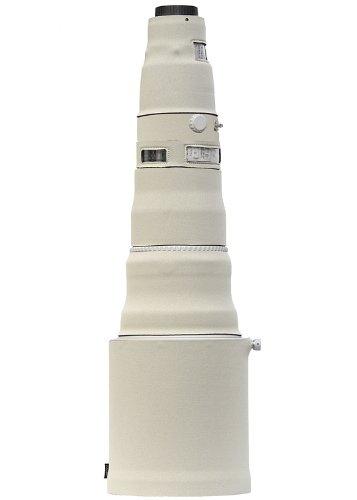 31JI5Ioh-7L.jpg