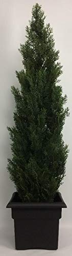 (Outdoor Artificial UV Rated 5 ft Cedar Topiary Tree with Square Black Planter)