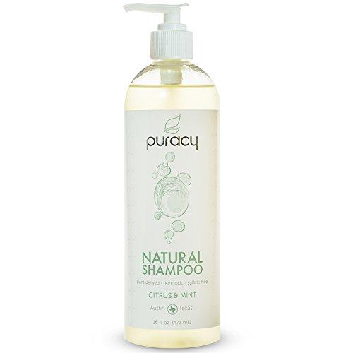 Puracy Natural Daily Sulfate-Free Hair Shampoo, Citrus & Mint, 16 Fluid Ounce