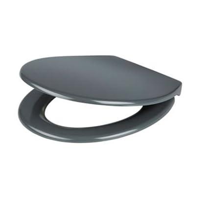 Astonishing Cooke Lewis Diani Grey Top Fix Soft Close Toilet Seat Inzonedesignstudio Interior Chair Design Inzonedesignstudiocom