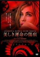美しき運命の傷痕 [DVD]