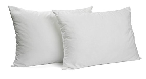 Gel Fiber Queen Pillow 2 Pack - Hypoallergenic, Extra