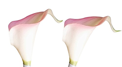 Lilies Pink Stem Long Calla (Lot of 60-Real Touch calla lilies (Baby Pink Trim))
