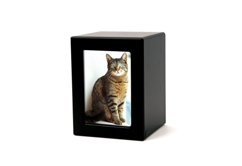 urn for cat ashes - 1