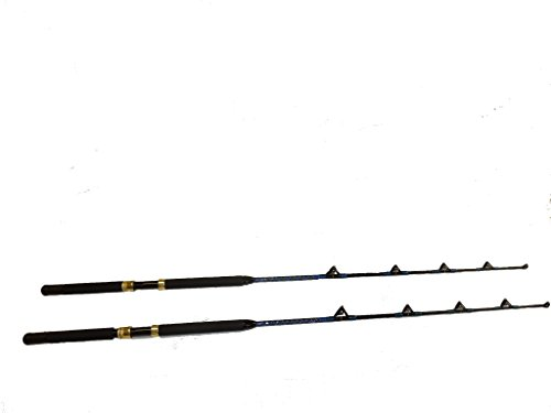 Saltwater fishing rods 30 - 50 pound 2 offshore poles all roller guides! (50 Lb Rod)