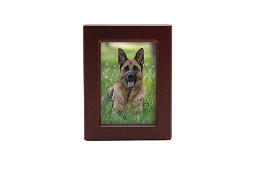 Near & Dear Pet Memorials MDF Pet Photo Cremation Urn, 85 Cubic Inch, Cherry Finish from Near & Dear Pet Memorials