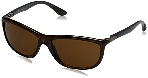 (Ray-Ban INJECTED MAN SUNGLASS - SHINY HAVANA Frame DARK BROWN Lenses 60mm Non-Polarized)