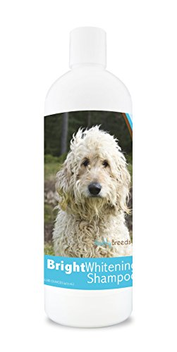 Healthy Breeds Dog Bright Whitening Shampoo For Goldendoodle, White- For White, Lighter Fur - Over 150 Breeds - 12 Oz - With Oatmeal For Dry, Itchy, Sensitive, Skin - Moisturizes, Nourishes Coat