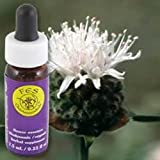 Flower Essence Services Supplement Dropper, Mountain Pennyroyal, 0.25 Ounce
