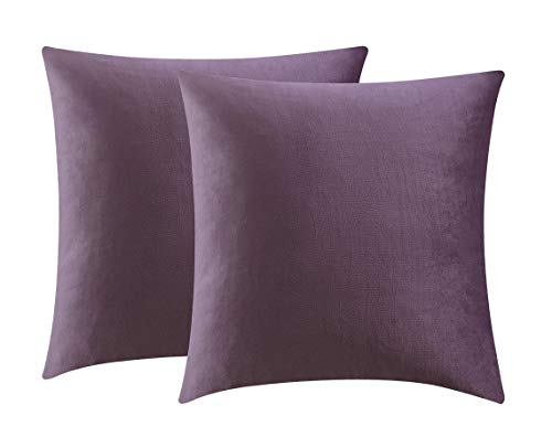 Comfortland Pack of 2, Decorative Velvet Pillow Covers Soft Square Throw Pillow Covers Soild Cushion Covers Violet Pillow Cases for Sofa Bedroom Car 18 x 18 Inch 45 x 45 cm