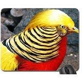 Golden-pheasant Mouse Pad, Mousepad (Birds Mouse Pad)
