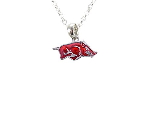 Sports Accessory Store Arkansas Razorbacks Iridescent Red Silver