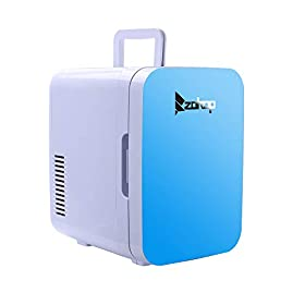 Mini Fridge Portable Electric Cooler/Warmer 6L / 8 Can Thermoelectric System Car Dorm Fridge AC/DC Campact Refrigerators for Car, Boat, Trip, Picnicking, Camping