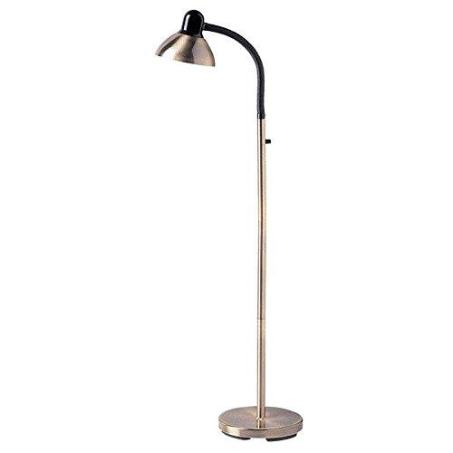 Dainolite Lighting DM238-F-AB Gooseneck Floor Lamp, Antique Brass and Gloss Black Finish