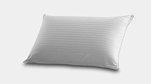 50% White Goose Feather - Down and Feather Blend Sleeping Pillow - 50% White Goose Down & 50% Feather, and 100% Cotton Fabric (Queen)