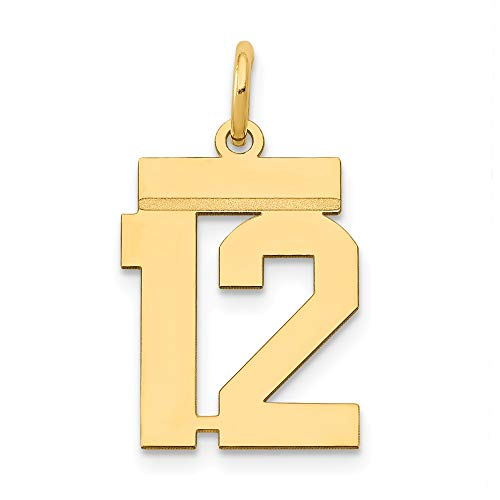 14k Yellow Gold Small Number 12 Pendant Charm Necklace Sport Fine Jewelry Gifts For Women For - 14k Gold Charm Sports Pendant