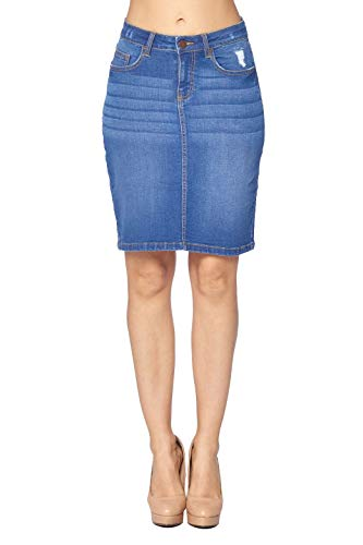 Blue Age Women's Well Stretch Distressed Denim Skirt (SS1003_LT_M)