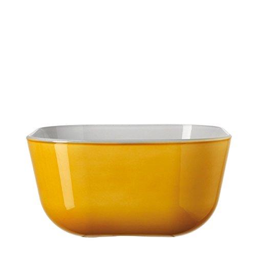 Leonardo Gusto Ambra Glass Bowl, 82 oz, Set of 2