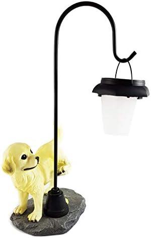 Gnomo Stube Colección de perro con farol solar lámpara Jardín Perros Figura solar: Amazon.es: Iluminación