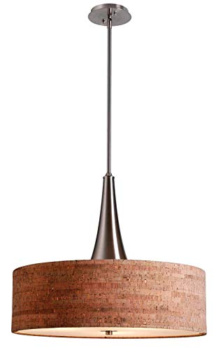 Kenroy Home 93013BS Bulletin 3 Light Pendant, 19 inch Height, 22 inch Diameter, Brushed Steel Finish