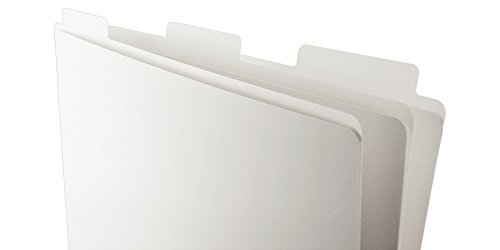 Ruby Paulina 11x17 File Folder (White) 60 pack