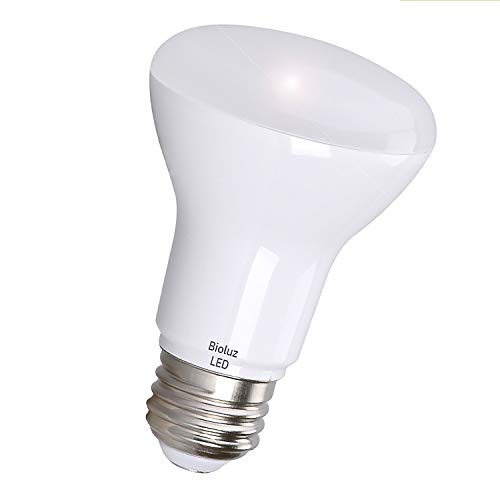 Small Outdoor Flood Light Bulb