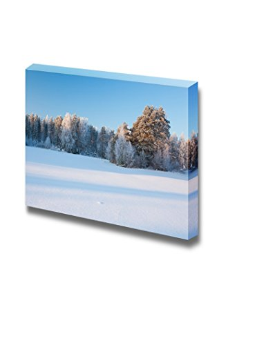 Snow Winter Landscape of Field and Forest Wall Decor ation