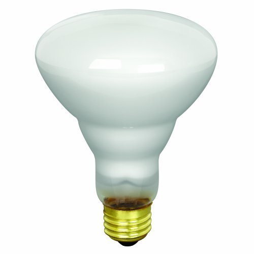 (Pack of 24) 65-Watt BR30 Indoor Reflector Light Bulbs, Incandescent Track & ...