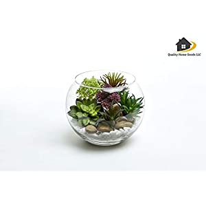 Artificial Faux Assorted Plant Succulents - Pack of 6 Small Mini Decorative Fake Flower Home Decor Pick for Indoor or Outdoor Garden, Terrarium, Aquarium, Large Pot, or Wall Planter Hanger (Spring) 4