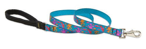 """LupinePet Originals 3/4"""" Wet Paint 6-foot Padded Handle Leash for Medium and Larger Dogs"""