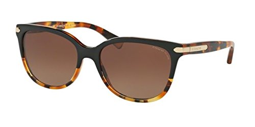 Coach Womens L109 Sunglasses (HC8132) Tortoise/Brown Acetate - Polarized - 57mm