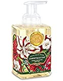 christmas Michel Design Works Scented Foaming Hand Soap, Christmas Day