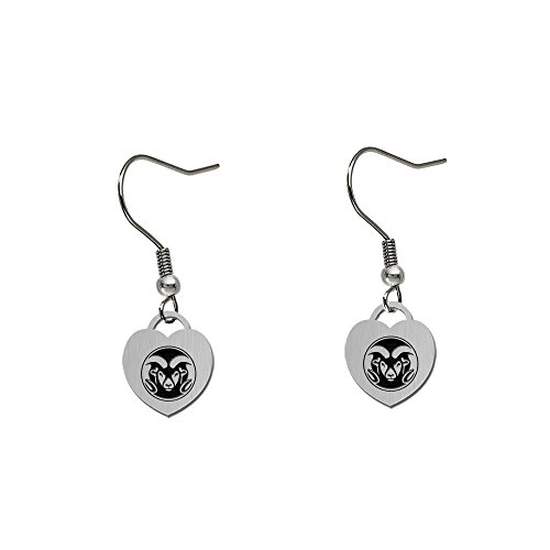 (Colorado State Rams Satin Finish Small Stainless Steel Heart Charm Earrings - See Model for Size Reference)