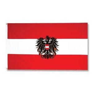 österreich Fahne Groß Amazonde Sport Freizeit
