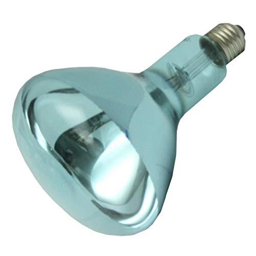 Lumiram 52150 - R40SP-150 Reflector Flood Daylight Full Spectrum Light ()