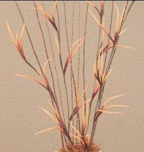 GreenFloralCrafts Claw Flowers 36 Tall, Pack of 4 (Requires Assembly) - Copper