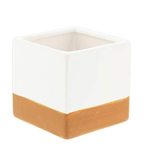 (Lucky Winner White Ceramic Cube Planter with Terra Cotta Stripe, 3.5