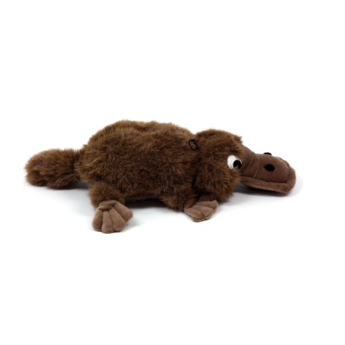Platypus Dog Toy With Eggs Wow Blog