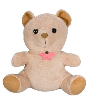 Xtreme LifeTM 720P Teddy Bear Hidden Camera w/Built in DVR HD