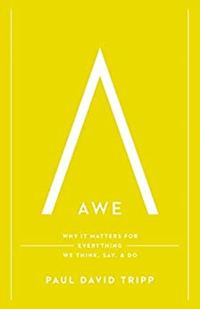 Awe: Why It Matters for Everything We Think, Say, and Do by [Tripp, Paul David]