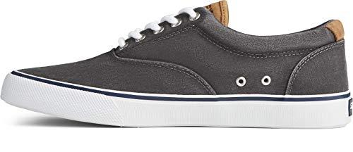 Sperry Men's Striper II CVO Core Sneaker, SW Black, 8.5 M US