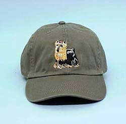 Cap: Yorkshire Terrier