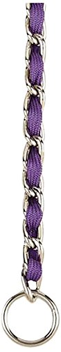 Guardian Gear 14-Inch Steel Dog Choke Chain with Nylon We...