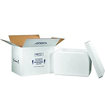 6d9b42f42e2d Amazon.com: Aviditi 269C Insulated Shipping Kits, 21-1/4