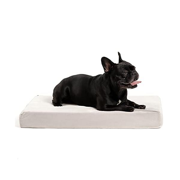 31JijwjHyCS ZENAPOKI Dog Bed - M - Orthopädisches Kissen für Hunde, gut die Gelenke - Hundebett flauschig aus Memory Schaum, Dog Bed…