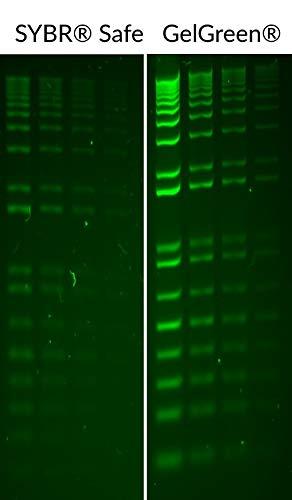 - GelGreen Nucleic Acid Gel Stain 10,000X in Water