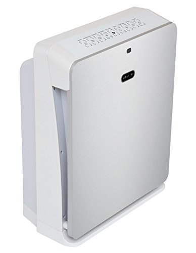 Whynter AFR-425-SW EcoPure Personal Air Purifier Silver